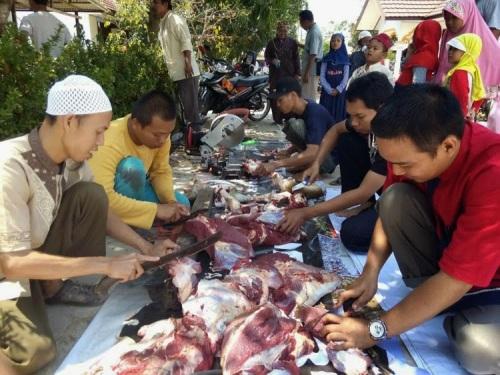 Pemotongan Kurban HTI Kota Banjarbaru (10)