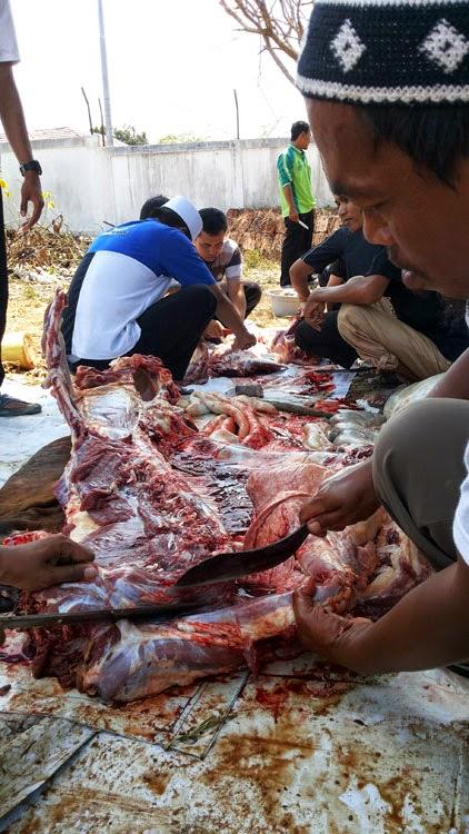 Pemotongan Kurban HTI Kota Banjarbaru (6)