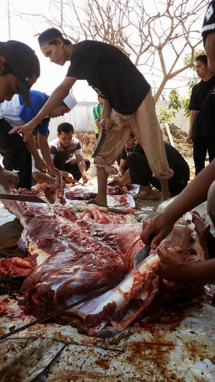 Pemotongan Kurban HTI Kota Banjarbaru (7)